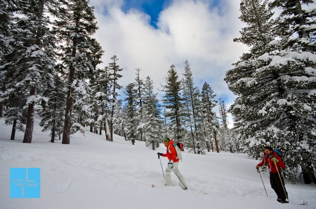 Tahoe Backcountry, Tahoe Backcountry Skiing, Waterhouse, Skiing, Backcountry Skiing, Telemark Skiing